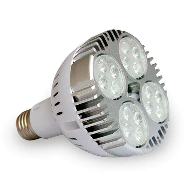 Lámpara LED PAR30 E27, 35W, Blanco cálido